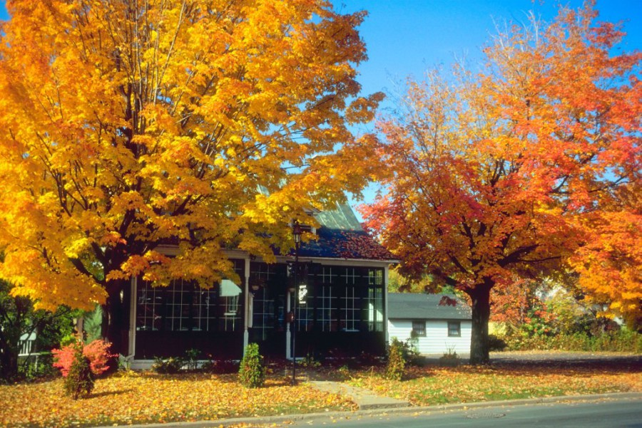 House in the Fall