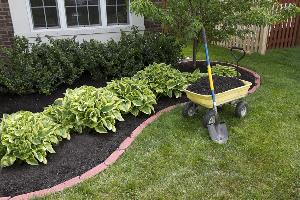 mulch is an affordable way to spruce up your yard